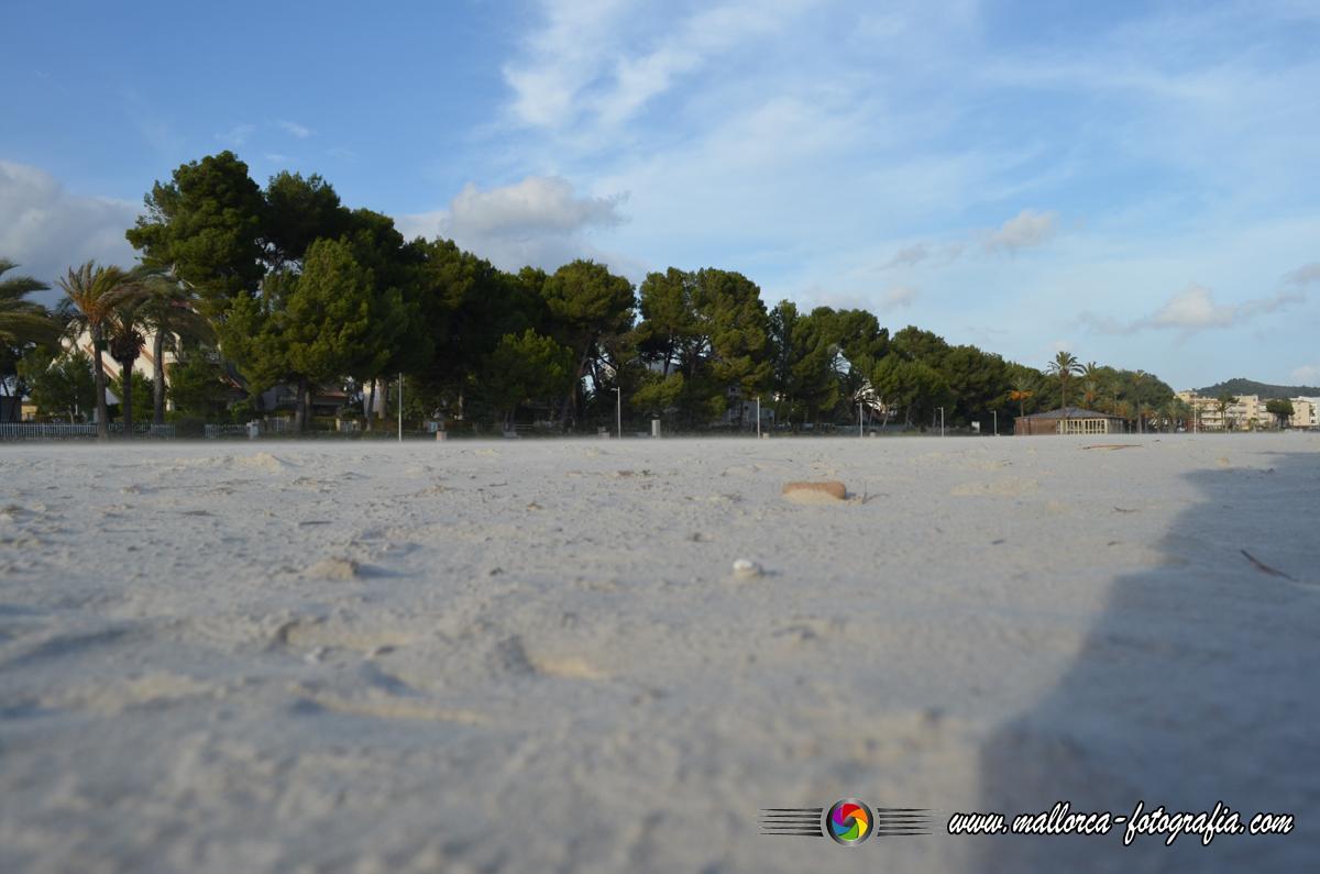 Kalenderblatt | 26.05.2019 - Playa de Alcúdia