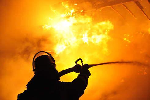 Feuerwehr bei Waldbrand im Einsatz