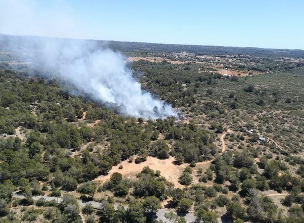 Waldbrand bei Son Veri auf Mallorca